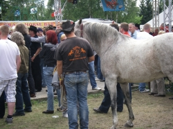 Friedersdorf-Trackerfest 2012 (46)