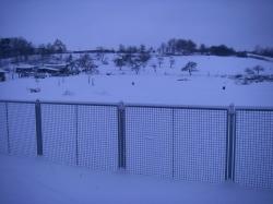 Winter 2009