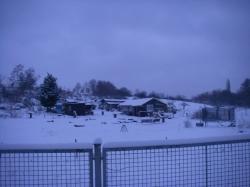 winter-09-10-012