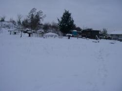 winter-09-10-032