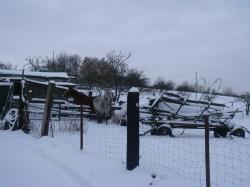 winter-09-10-036
